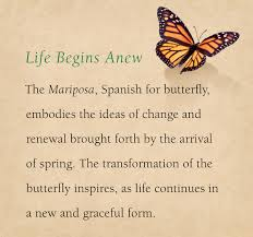 the meaning the mariposa inspiration many designs