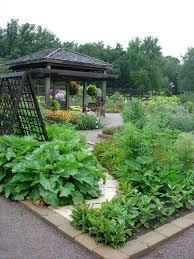 Small Kitchen Garden Ideas Best Container Plants Gardenabc Com