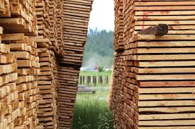 Wild Fires In Bc Videos by Lumber Prices See U0027big Jump U0027 After Wildfires In B C 100 Mile