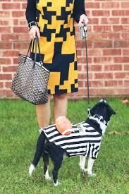 Referee Halloween Costume Black U0026 Yellow Dog Football Rufferee Halloween Costume