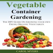 cheap vegetables for container gardening find vegetables for