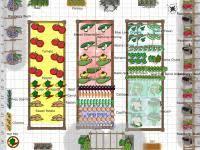 garden design garden design with how to plant vegetables sunset