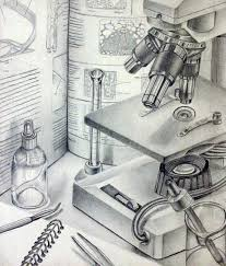 12 best still life drawing ideas images on pinterest drawing