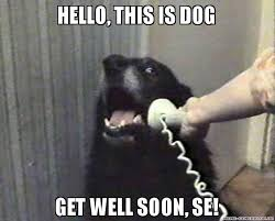 Get Well Soon Meme Funny - 20 funny get well soon memes to cheer up your dear one love