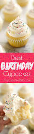Best 25 Cupcake Costume Ideas On Pinterest Cupcake Halloween Best 25 Kids Birthday Cupcakes Ideas Only On Pinterest Cupcake