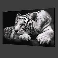 41 tiger wall art stunning tiger wall art sticker vinyl bedroom stunning white tiger premium canvas picture wall art modern design
