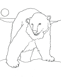 polarbearcoloringpage jpg