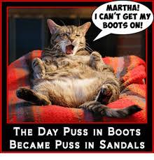 25 memes puss boots puss boots memes