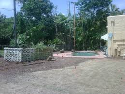 Landscaping Company In Miami by Miami Landscape Design Archives Blaum Landscaping