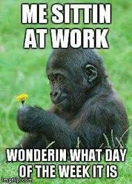 Wednesday Funny Meme - except for me it s school funny funny ha ha pinterest