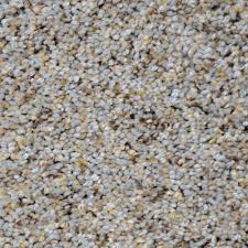 home decorators collection nevada color colfax texture 12 ft