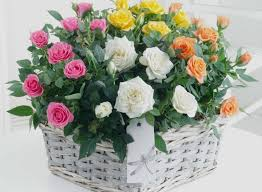 free flower delivery send a bouquet of flowers new flowers delivered free uk flower