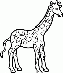cute coloring pages of giraffes coloring home