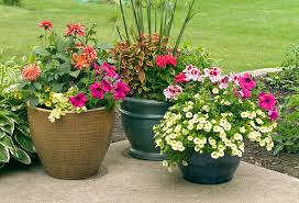 outdoor urns for pretty flower outdoor furniture