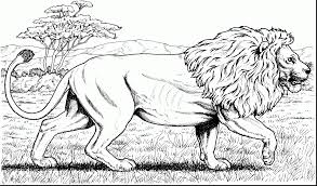lion king scar coloring pages lion king coloring pages