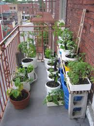 balcony gardening for beginners home outdoor decoration