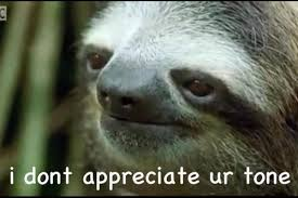 Sexy Sloth Meme - official the official titillatingly sexy community thread