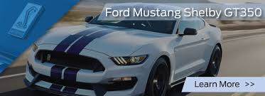 pictures of mustangs ford specialty mustangs bridge nj mustang shelby gt350 gt