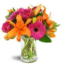 elkton florist vibrant shine elkton md florist