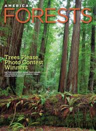 american forests magazine american forests