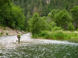 South Dakota rivers images Black hills fishing dakota angler outfitter black hills fishing jpg