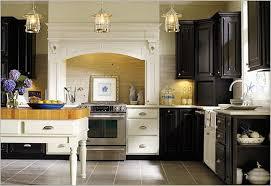 Thomasville Kitchen Cabinet Reviews Thomasville Kitchen Cabinets Colors Home Design Ideas