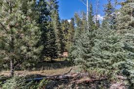 Beaver Homes And Cottages Price List by Beaver Ut Real Estate Beaver Homes For Sale Realtor Com