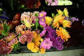 flowers okc sooner florist when you need flowers sooner