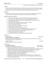 Sample Web Designer Resume by Stylish Resume Of Web Designer Resume Format Web