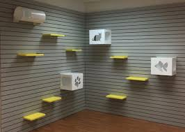 cat enrichment wall direct animal