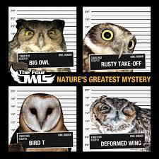 the four owls u2013 lights off lyrics genius lyrics