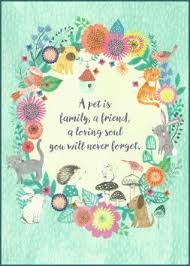 pet condolences pet sympathy cards dog sympathy cards cat sympathy cards pet loss