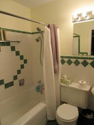 Green And Brown Area Rugs Bathroom Decorating Design Ideas Using Furry Dark Green Bathroom