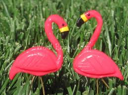 25 unique pink flamingos lawn ornaments ideas on