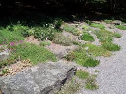 Rock Garden Pictures Ideas by Outdoor Design Rock Design Outdoor Classic Home Ideas Rock