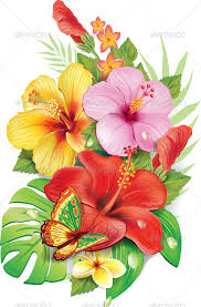 Tropical Flowers And Plants - 19 hawaiian plants and tropical flowers bouquet of tropical