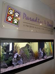 Aquarium Room Divider In Wall Room Divider Aquarium Freshwater Blue Planet Aquarium