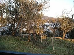 bbq hammock posts near rock garden picture of turon gates