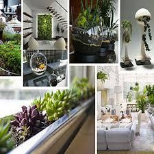 Best Cannabis Grow Lighting Images On Pinterest Indoor - Interior garden design ideas