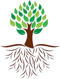 clipart oak tree with roots