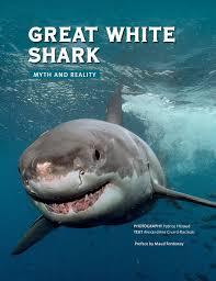 great white shark myth and reality alexandrine civard racinais