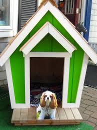 Wondrous Petmate Indigo Dog House Then Heater Dog Houses At