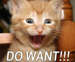 Do Not Want Meme - do not want cat macros
