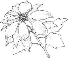 christmas flower bouquet greeting card coloring super