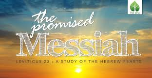 seven feasts of the messiah the promised messiah and the feasts of israel leviticus 23