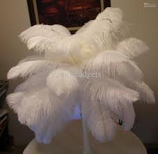 6 8 inch natural dyed ostrich feather plume hat costume