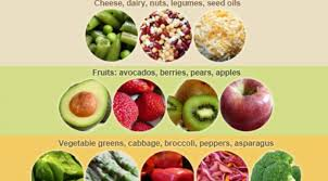 low carb u2013 health journal medlog info