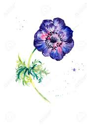 painting greeting cards in watercolor flower anemone watercolor painting greeting cards flower