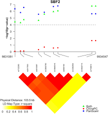 genome wide association study of survival in patients with