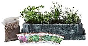 Indoor Garden Kit Cedar Wood Planter Box Complete Mini Herb Garden Kit Indoor